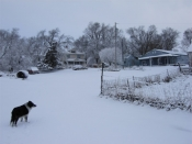 "Thumbnail image of ""snowy home"""